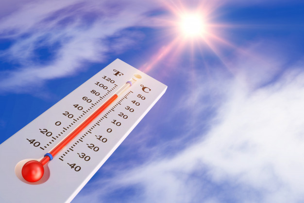 storage tips for hot weather